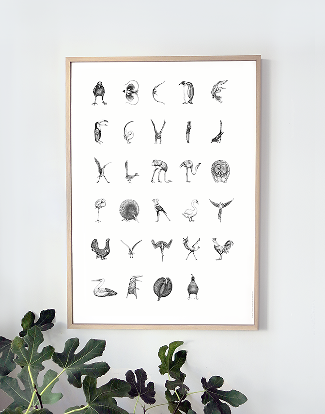 Danish bird alphabet