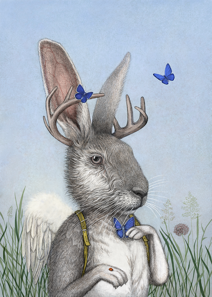 the dressed up hare